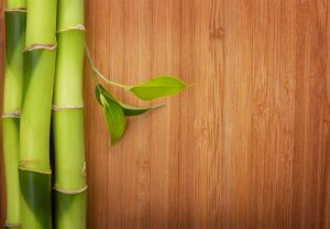 The Pros and Cons of Bamboo Flooring for Your Home