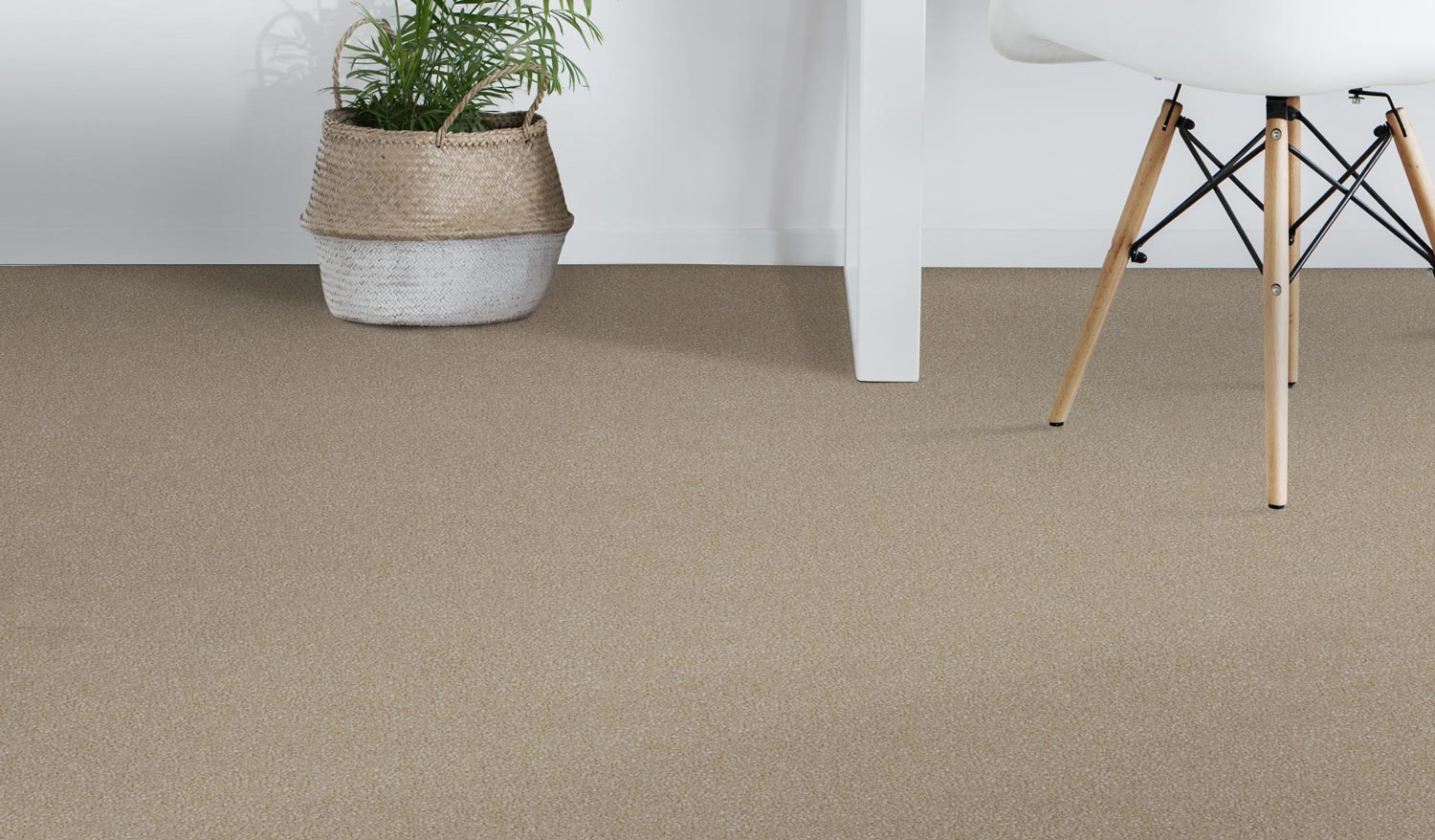Carpets Brisbane Leading Brands Amp High Quality