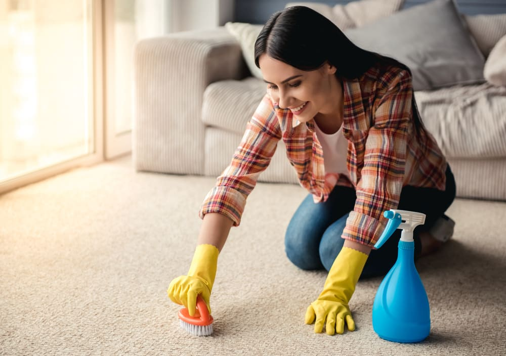 5 Essential Winter Carpet Care Tips